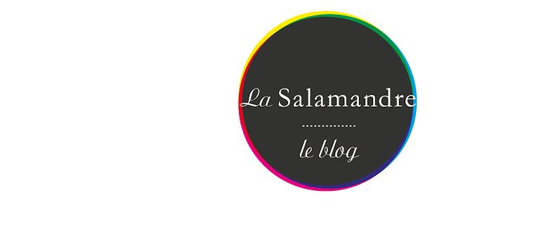 Cinéma La Salamandre