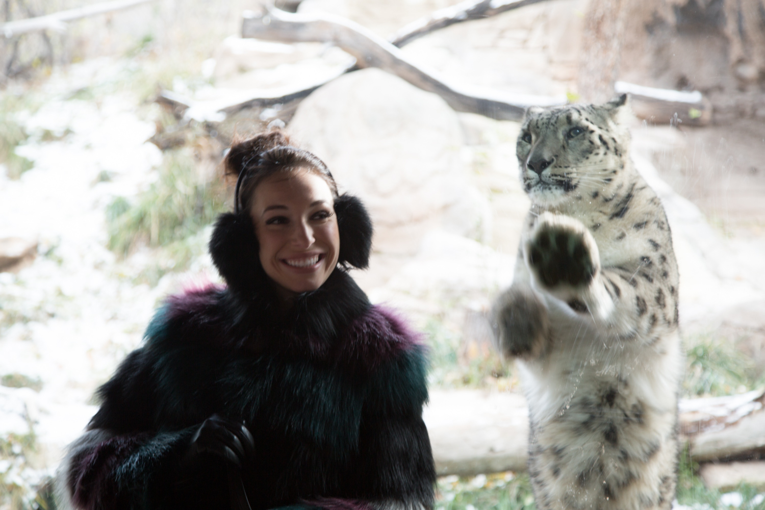 The Best Time to Visit Utah's Hogle Zoo