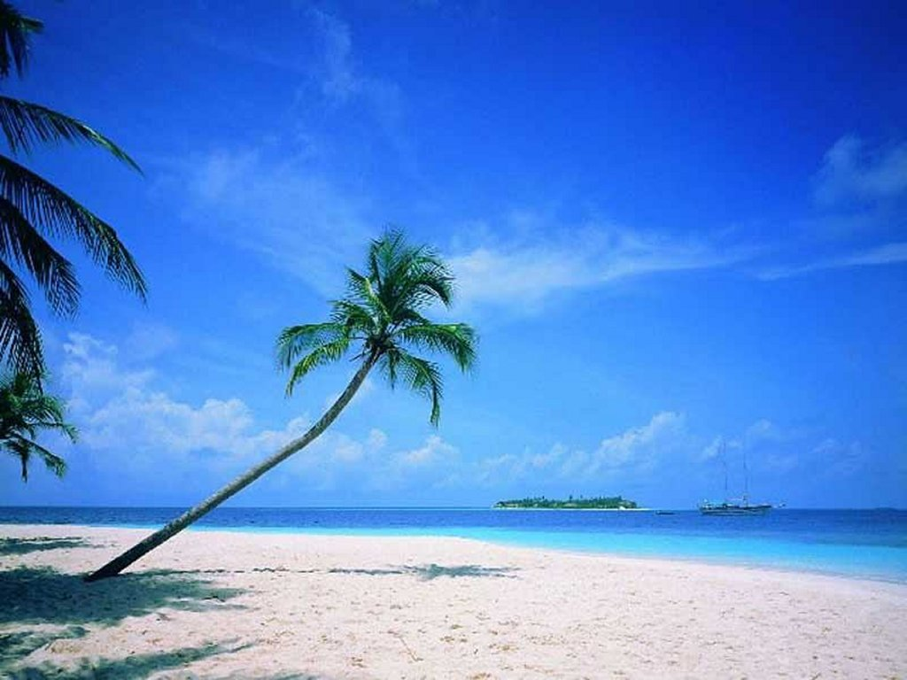 cool beach wallpaper backgrounds 2015 - wallpapers hd