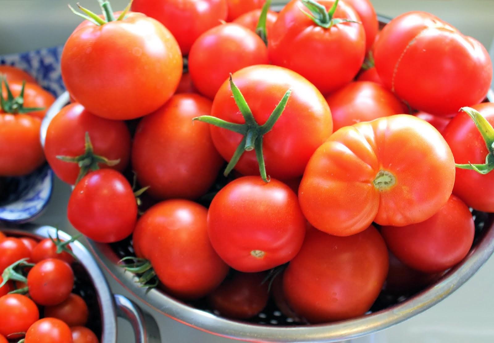 Salsa Basica de Tomates Frescos