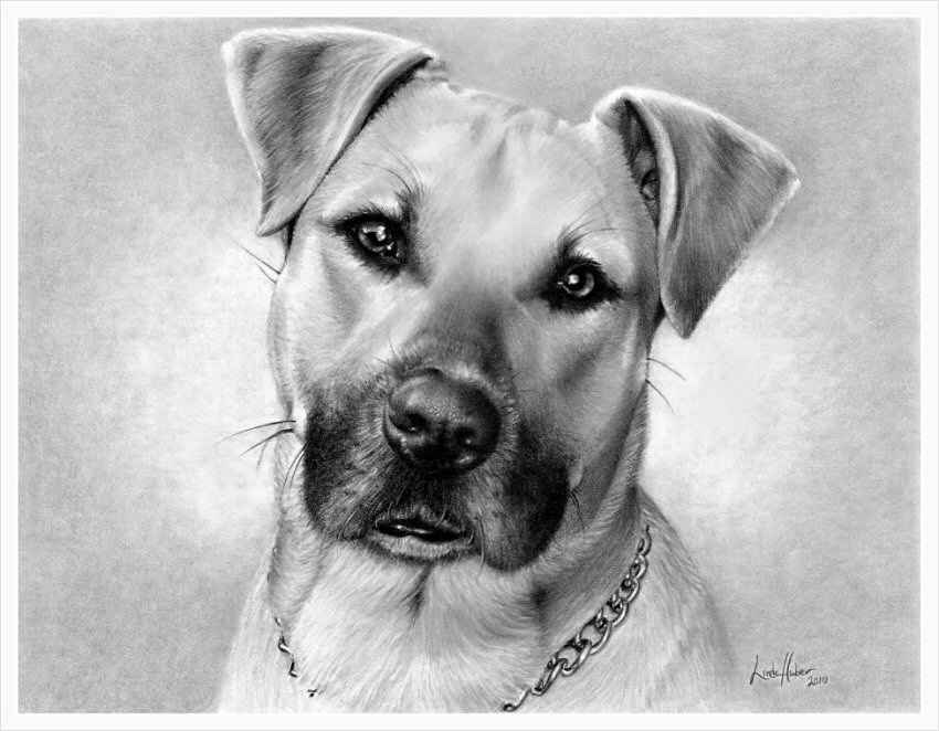 10-Linda-Huber-Hyper-Realistic-Pencil-Graphite-Drawings-www-designstack-co