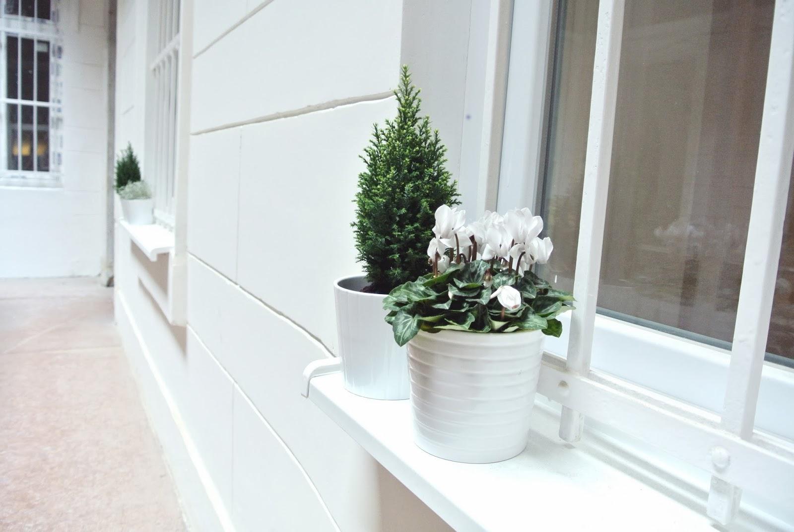 Paulay Design Apartment - exterior