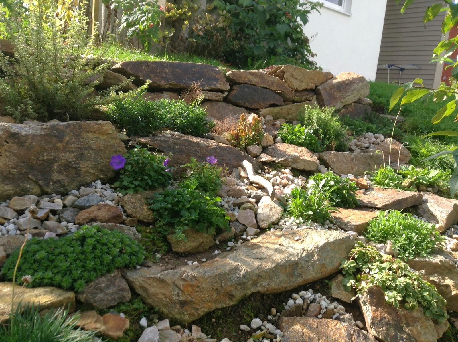 unser steiniger stadtgarten projekt steingarten. Black Bedroom Furniture Sets. Home Design Ideas