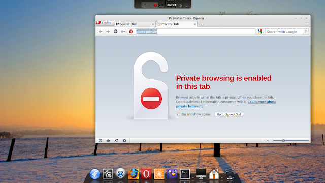 start opera private browsing automatically