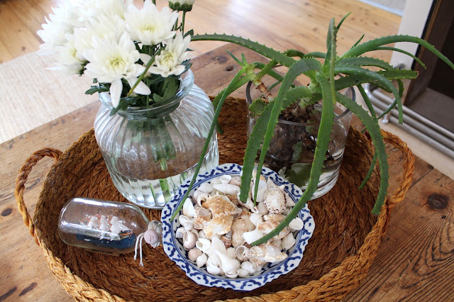 Beach House Decor, Styling a Coffee Table | Desire Empire