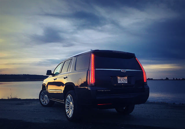 2016 Cadillac Escalade Platinum rear