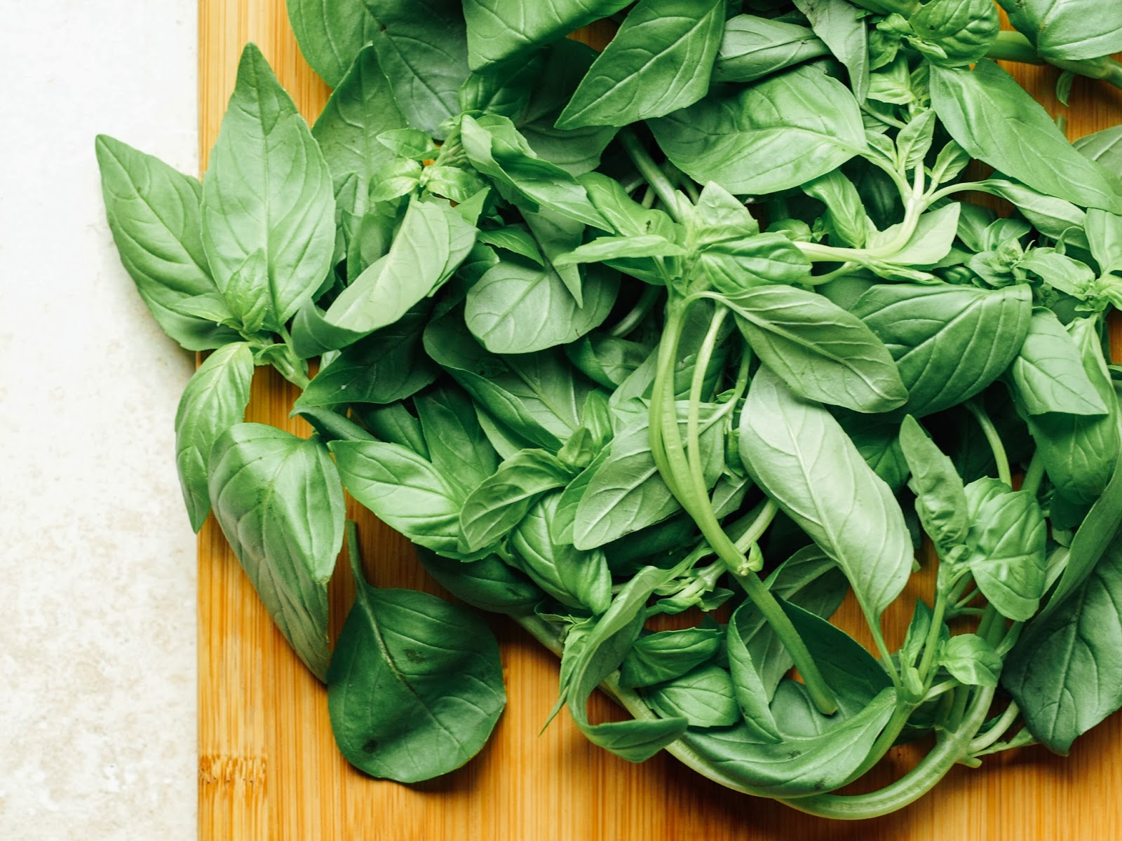Basic Basil Walnut Pesto Recipes — Dishmaps