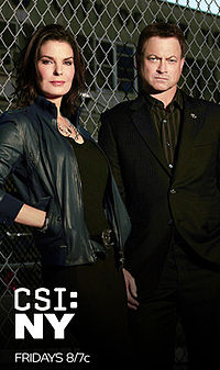 CSI NEW YORK 9X14 ESPAÑOL