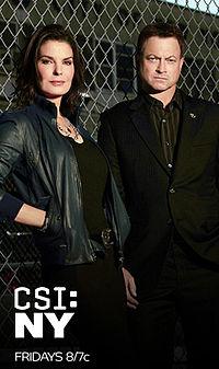 CSI NEW YORK 9X17 ESPAÑOL