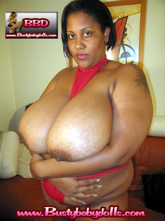 stephanie courtney boobs
