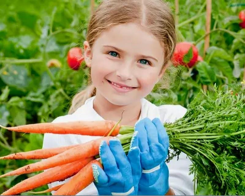Cultive uma hortinha e estimule seu filho a comer melhor