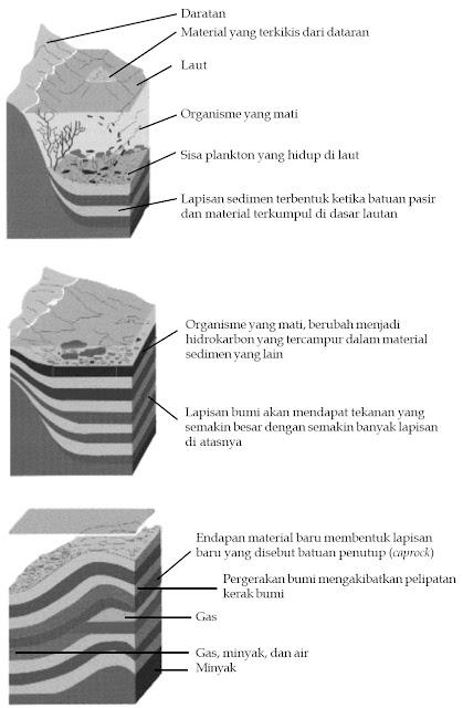 Sumber minyak bumi merupakan sisa-sisa fosil hewan selama jutaan tahun.