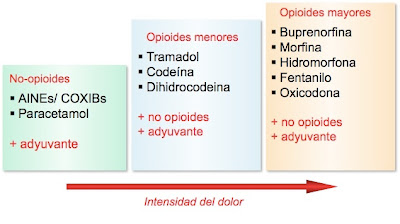 escalera analgesica oms:
