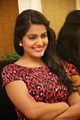 Vishaka singh at rowdy fellow event-thumbnail-12