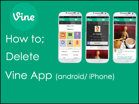 How to delete vine app on android and iphone delete vine how the vine app is available for all mobile platforms like android ios devices and windows phones for free vine can be a powerful tool to create different ccuart Gallery