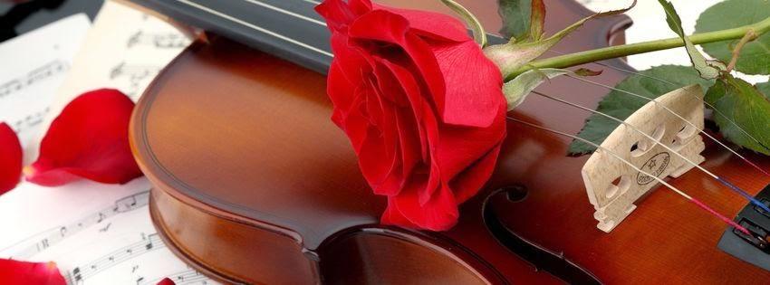 Jolie image de couverture facebook violon