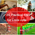 25 Practical Uses for Coca-cola, Proof It Should Not Be In Human Body!