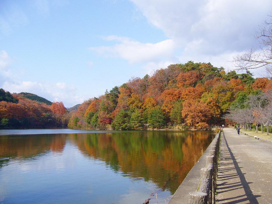 京都市・宝が池公園の紅葉を眺め...