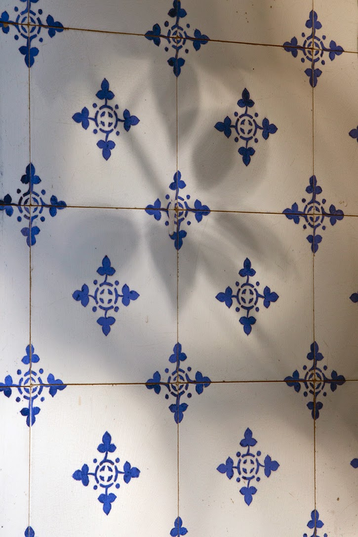 shadows on blue-and-white tiles