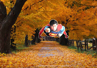Superman desktop wallpapers Superman flying at sonic speed in Autumn Trees background