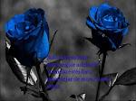 ¡¡¡ Seda Azul !!!
