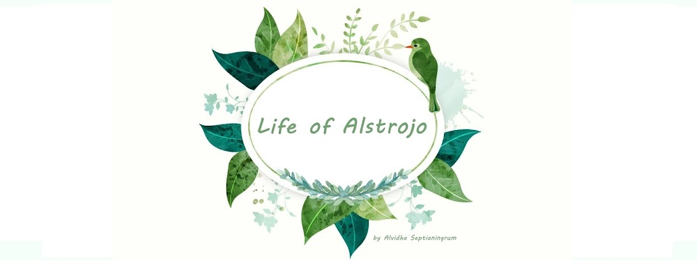 Here comes the Alstrojo!