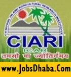 Central Island Agricultural Research Institute, CIARI Recruitment, Jobsdhaba, Sarkari Naukri