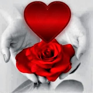 Viniste a das sentido a mi vida, frases de un verdadero amor, cartas para enamorar