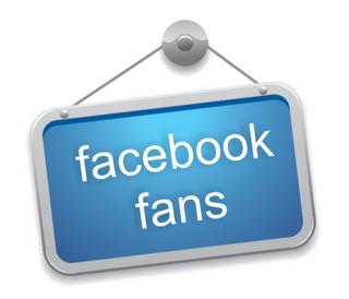 Cara Masang Fans Page atau Halaman di Blog