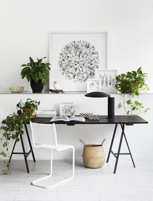 organiser son bureau à la mode feng-shui Marie Kondo ,déco rangement ranger organsier bureau workplace work space, bureau noir et blanc plantes vertes feng shui tréteaux
