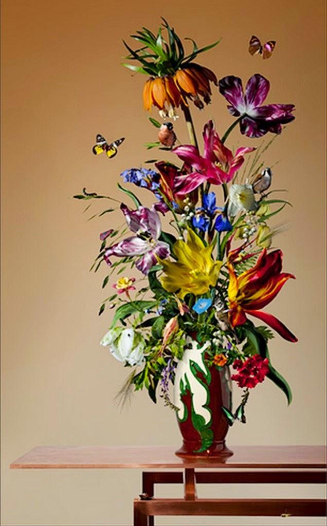 fotografias-de-flores-colores-vivos