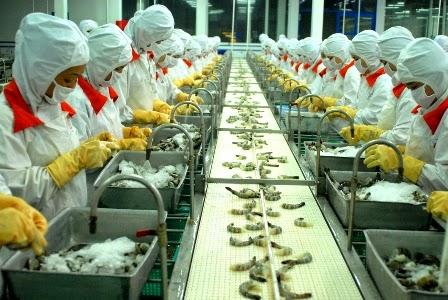 Quy định về xuất khẩu lao động Nhật Bản