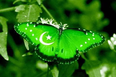 Pakistan Flag Wallpaper 100149 Pakistan Flag, Beautiful Pakistan Flag, Pak Flags, Paki Flag, Pak Flag, Animated Pak Flag,