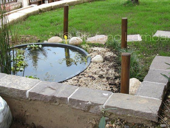 Piccolo giardino dei sogni giardino 3 metri x 2 e ci sta for Vasca pvc laghetto
