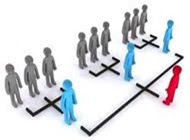 Adaptación de la organización a la planificación y control de utilidades.
