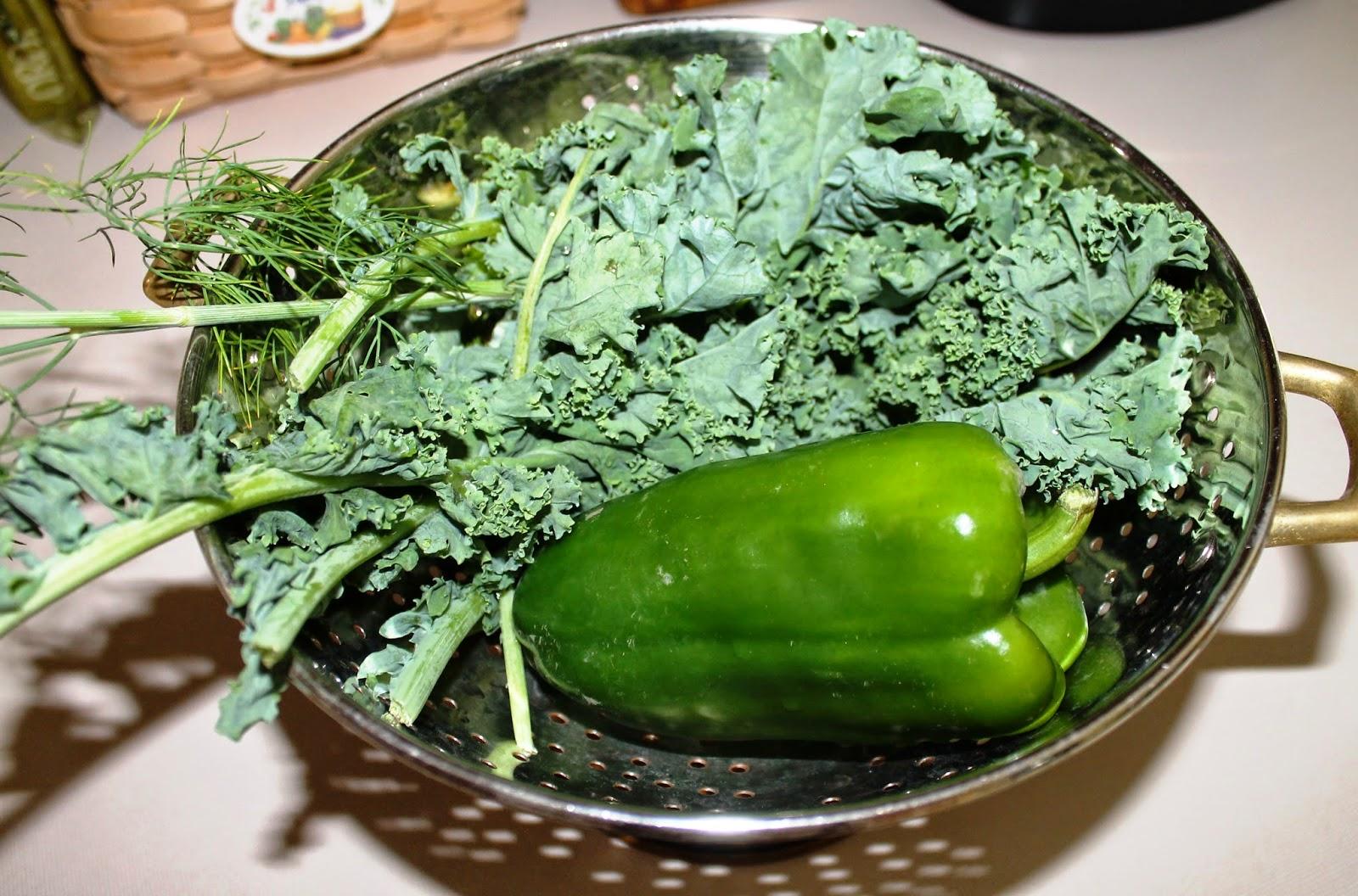 First garden kale