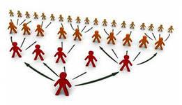 Как правильно выбрать сетевую компанию?