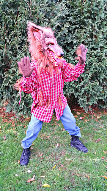 Easy diy werewolf costume redo it yourself inspirations easy diy i think i pulled it off solutioingenieria Choice Image