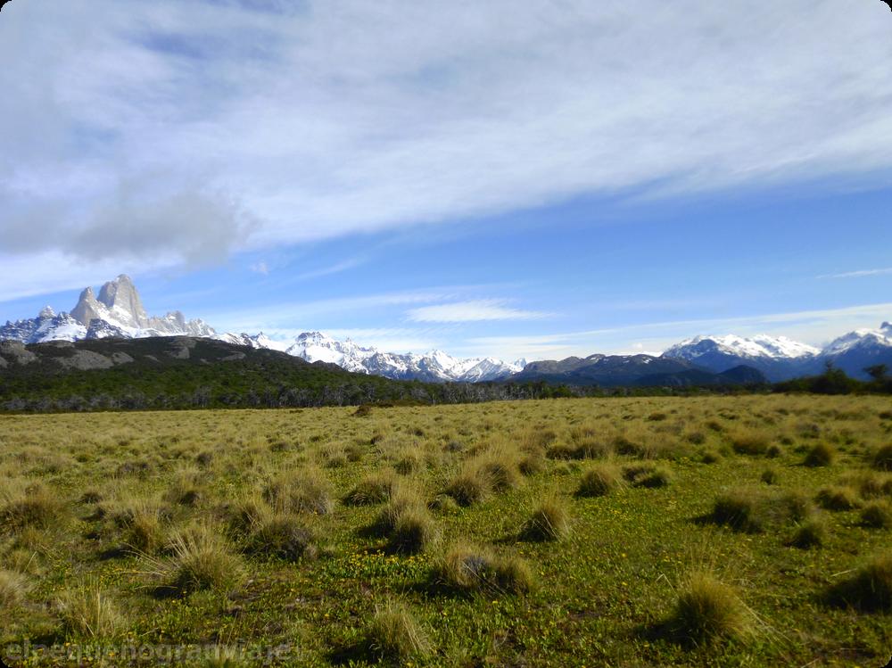 El Chaltén, patagonia , senda, sendero Pliegue Tumbado, pradera