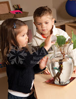 children watering plant important things learned from NAMC montessori students
