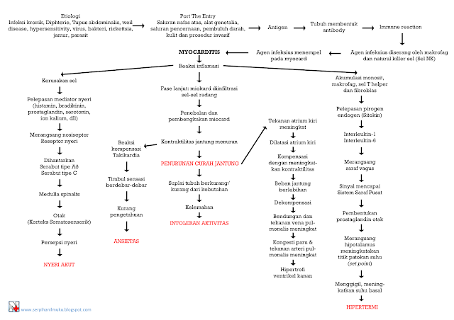 Perjalanan Penyakit Miocarditis Hingga Diagnosis Keperawatan