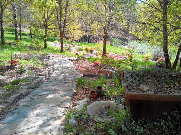 Ver fotos de jardines cuidar de tus plantas es for Ver jardines