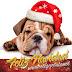 Diseños de Tarjetas Navideñas de Perritos para Google+