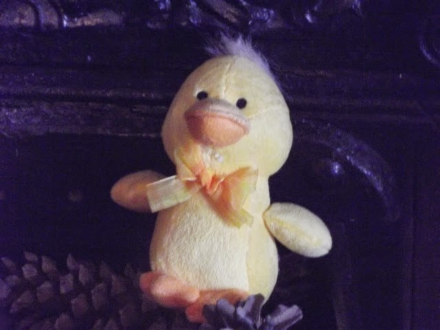 cheeky chick in the fireplace at Sizergh Castle