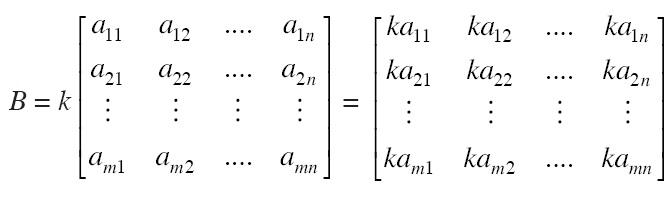 Pengertian Perkalian Suatu Skalar dengan Matriks