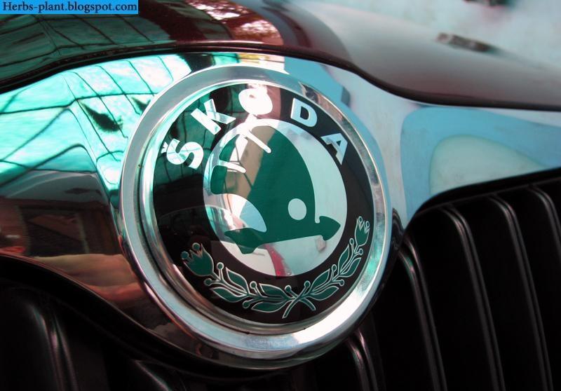 Skoda superb car 2013 logo - صور شعار سيارة سكودا سوبيرب 2013