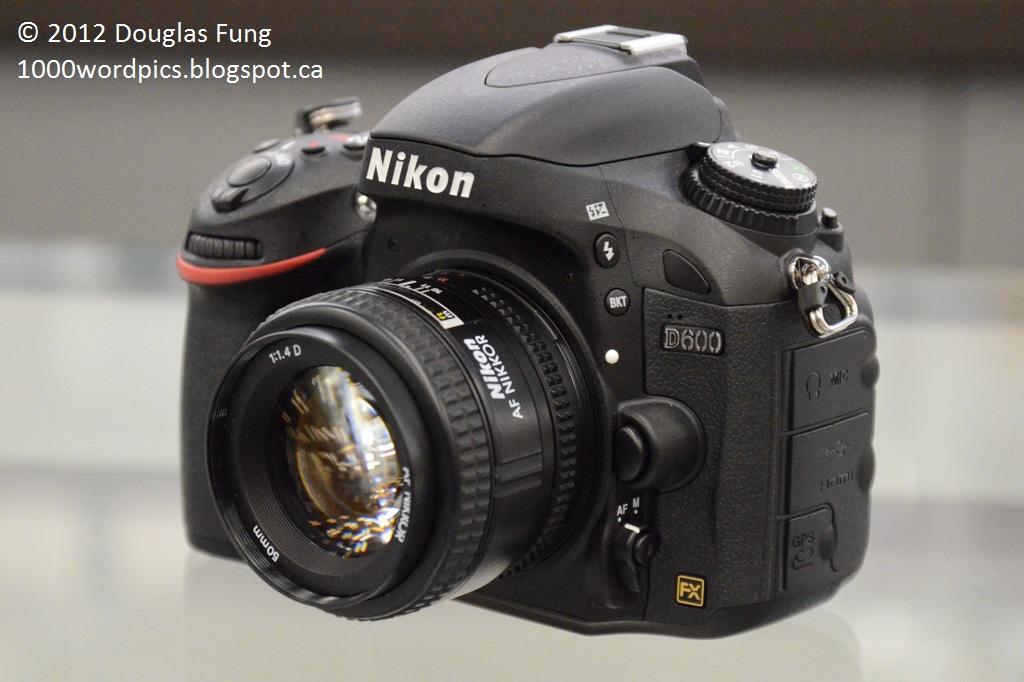 A Thousand Words A Picture: Nikon D7100 vs D600
