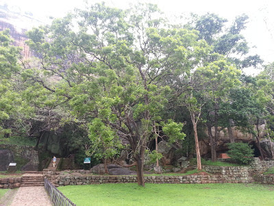 Sigiriya Terraced Gardens, getting close to Boulder Gardens, road paved stones, giant boulders, passage arc, water