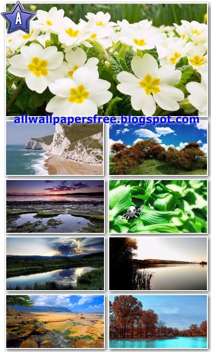 20 Amazing Nature Full HD Wallpapers 1080p [Set 4]