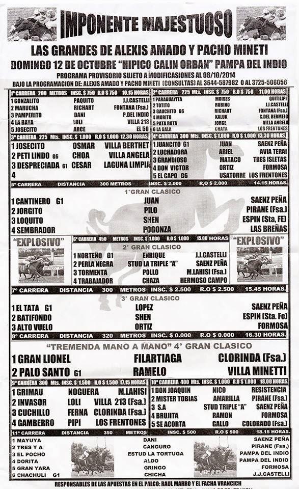 Pampa del Indio Programa